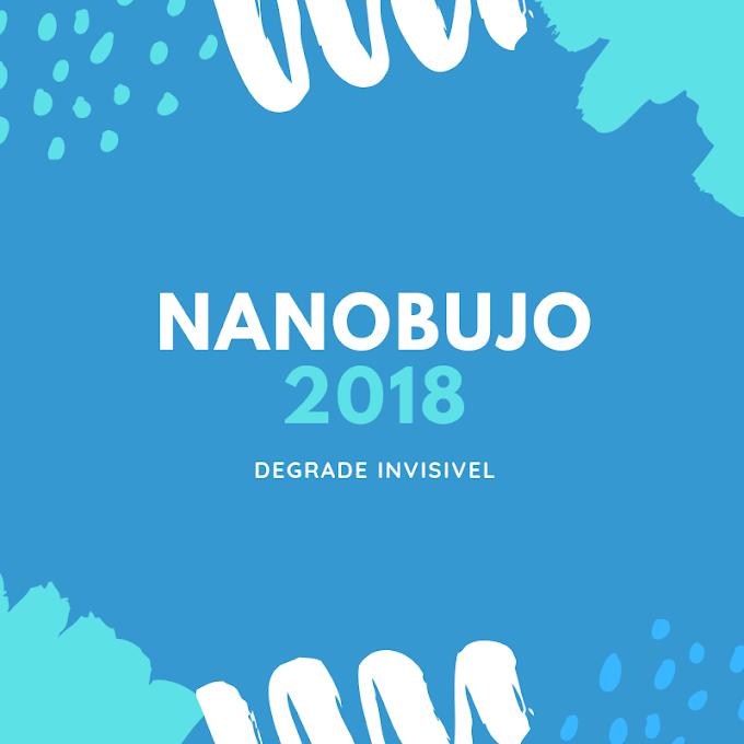 NaNoBuJo 2018