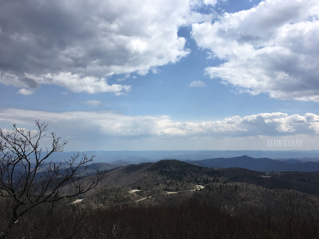 Der Rabe im Schlamm, Mount Pisgah, North Carolina