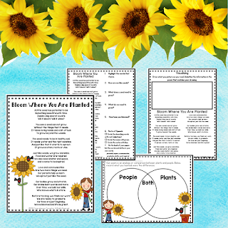With many grade levels teaching plant concepts, this poetry set is perfect for extending across the curriculm. It includes an original poem, vocabulary cards, and three post reading comprehension activities. Check out this post for information on using poetry to build reading fluency and to download this free resource.