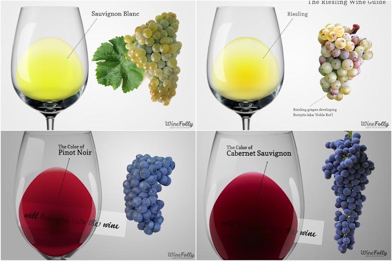 這次試飲的四種葡萄酒