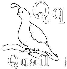 quail Old Letter Template With Quail on