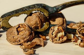 walnut, makanan yang baik untuk ibu hamil agar bayi sehat dan cerdas