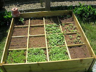 le jardinage cologique avec ecostyle mon jardin potager dans le bac et mon grand jardin. Black Bedroom Furniture Sets. Home Design Ideas