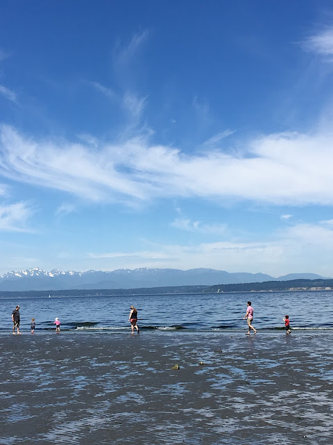 Carkeek park at low tide