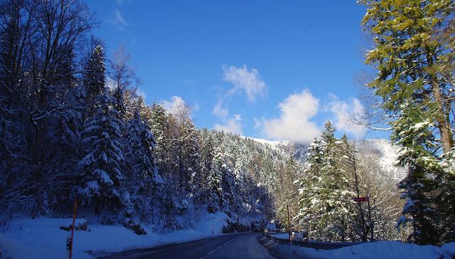 Swiss Alps Driving