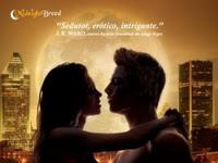 Resenha O Véu da Meia-Noite - Midnight Breed # 5 - Lara Adrian