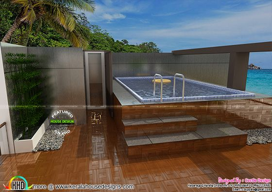 house with terrace swimming pool kerala home design and floor plans. Black Bedroom Furniture Sets. Home Design Ideas
