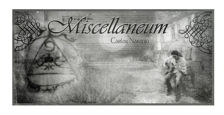 http://miscellaneumproject.blogspot.com.es/