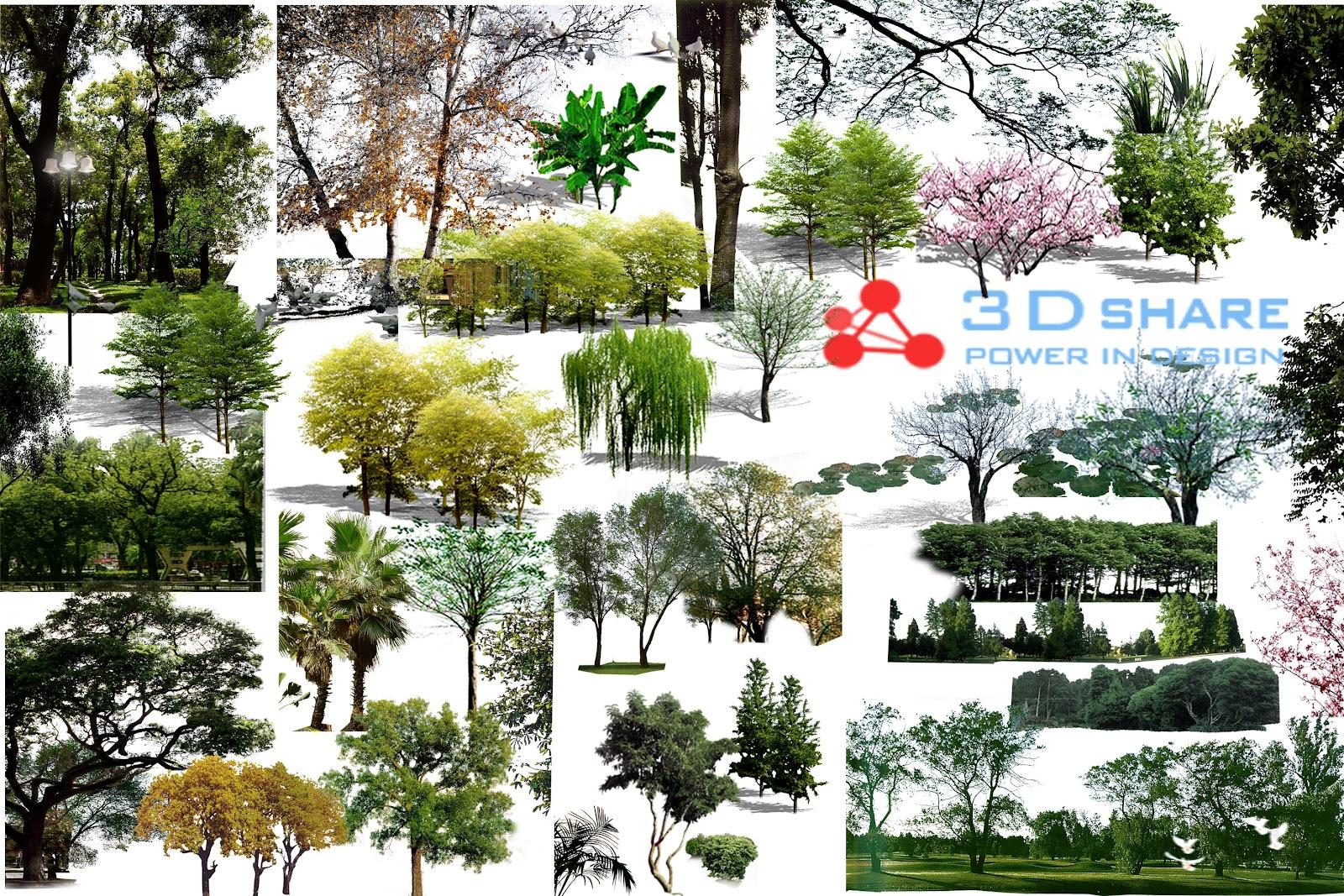 [photoshop][tree]  part 17