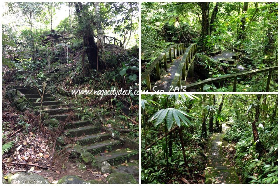 Guide to Consocep Mountain Resort / Falls ~ Naga City Deck