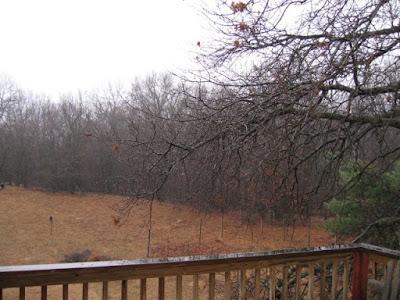 March rain storm