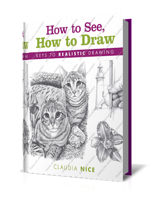How to See, How to Draw - Claudia Nice