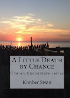 A Little Death by Chance (Kimber Swan)