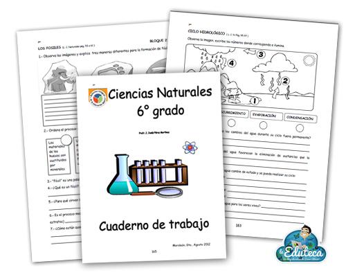 Recursos Primaria Cuadernillo De Actividades De Ciencias Naturales Para 6º De Primaria La Eduteca