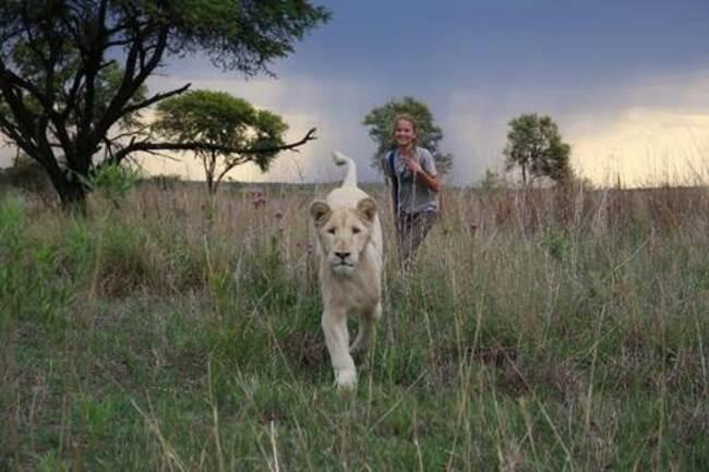 Linda música no trailer de A Menina e o Leão