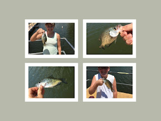 Crappie Fishing, Truman Lake Crappie Fishing, Lake of the Ozarks