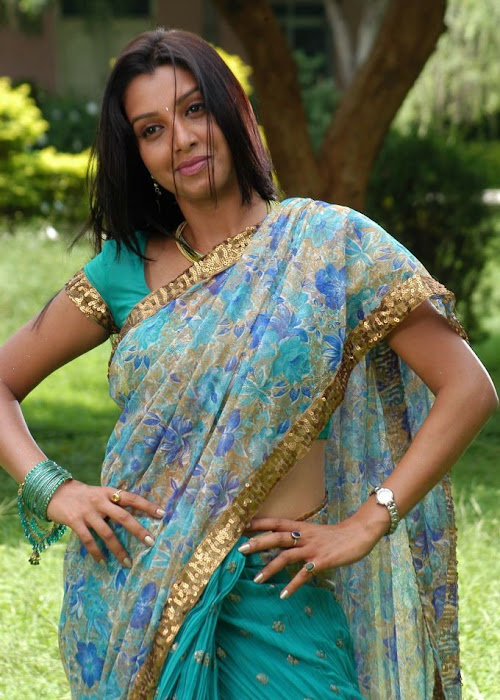 manjulika in saree glamour  images