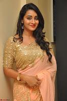 Bhanu Shri looks stunning in Beig Saree choli at Kalamandir Foundation 7th anniversary Celebrations ~  Actress Galleries 043.JPG