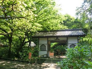明月院(鎌倉市)