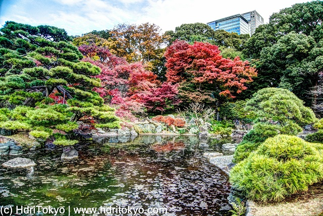 Ninomaru garden is a Japanese style garden located in the East Gardens of the Imperial Palas. The garden is rich in nature, you can find beauty in each ...