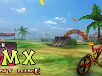 Download Teen BMX Stunt Bike