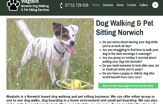 For all those with Canine syle pets in my area! Wagtails Dog walking in Norwich.