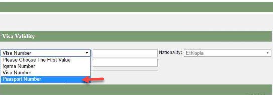 Visa Check validity via Passport number