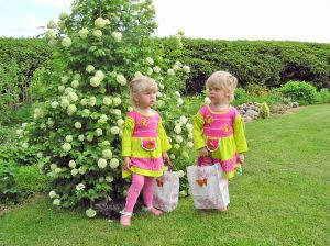 Image: Twins - two little girls, by Hermo Sakk, on FreeImages