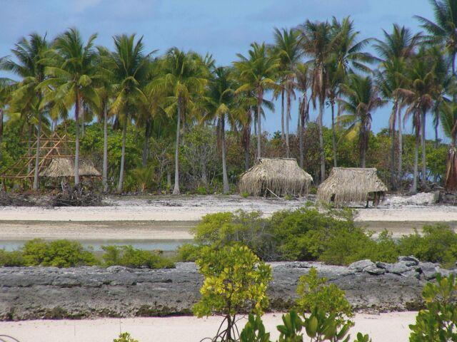 Thornes In Tarawa Homes And Huts In Kiribati