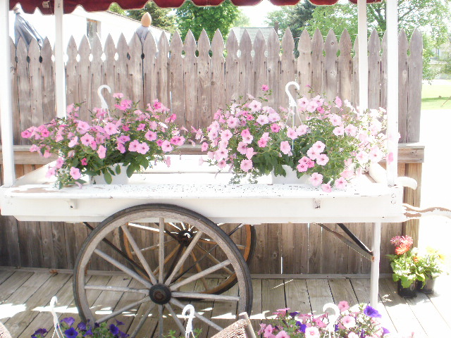 Shipshewana, flowers, cart