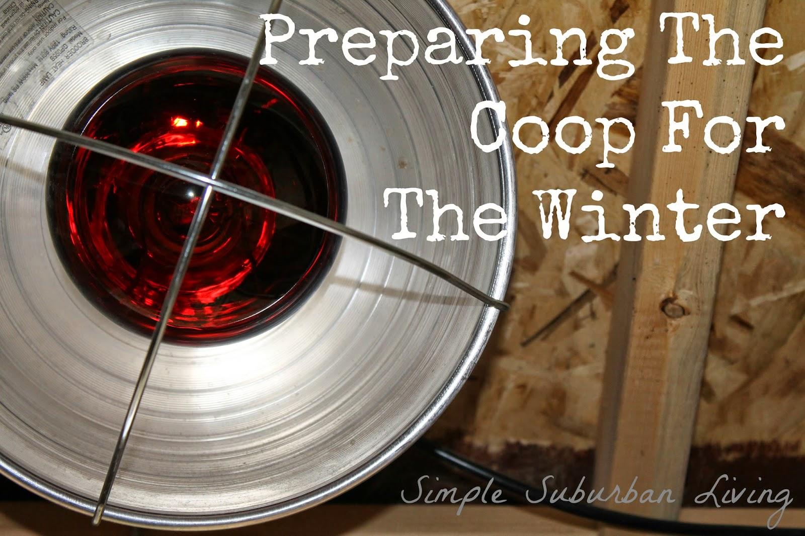 Suburban Chicken Coop Preventing Freezing Amp Preparing For
