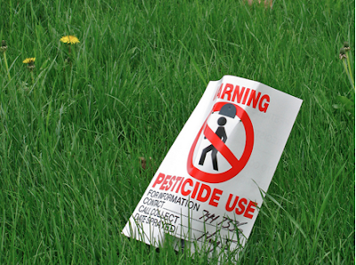 Ban on hazardous pesticides may reduce farmer suicides