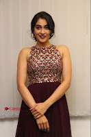 Actress Regina Candra Latest Stills in Maroon Long Dress at Saravanan Irukka Bayamaen Movie Success Meet .COM 0008.jpg