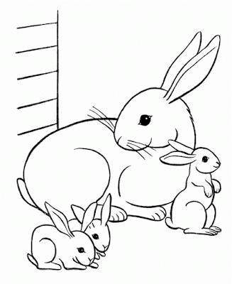 Gambar mewarnai kelinci - 10