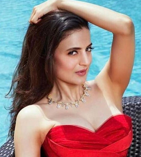 Ameesha Patel 2016 hot, age, bikini, biography, boyfriend, brother, family, hot scene, husband name, images, marriage, movies, photos, upcoming movies
