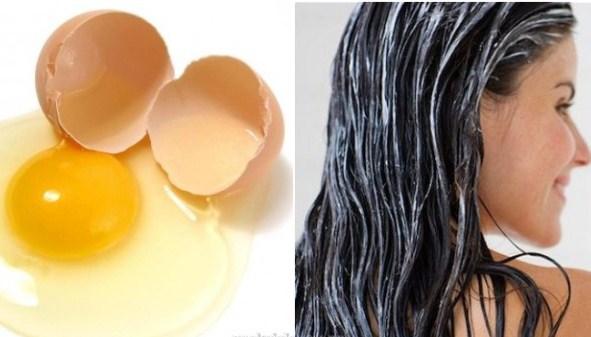 Manfaat Luar Biasa Telur Untuk Rambut