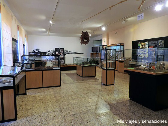 Museo de los Dinosaurios, Sala de los Infantes