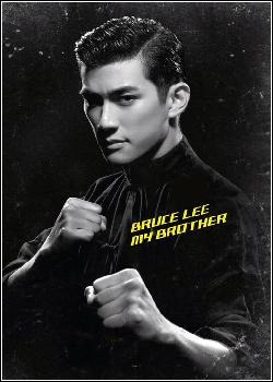 Bruce Lee, Meu Irmão Dublado