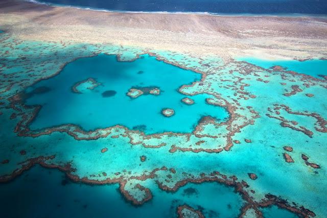 Heart Reef Grande barriere de corail