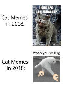 Dank Memes 16