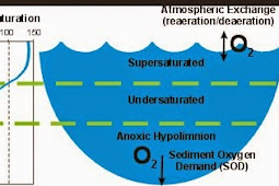 DO METER | CARA PENGUKURAN DO (DISSOLVED OXYGEN)