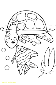 Turtle And Fish Coloring Pages Animals