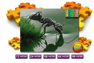 http://pt.flashgamehq.com/flash-game/black-thirsty-ant-puzzle/