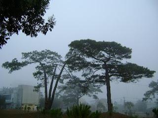 Sương Pleiku