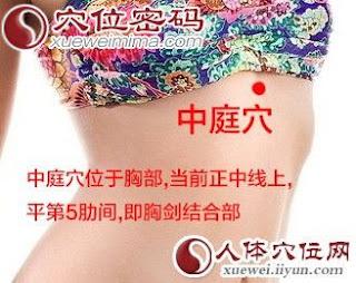 中庭穴位 | 中庭穴痛位置 - 穴道按摩經絡圖解 | Source:xueweitu.iiyun.com