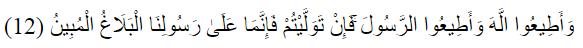 Q.S. At - Tagabun [64] : 12