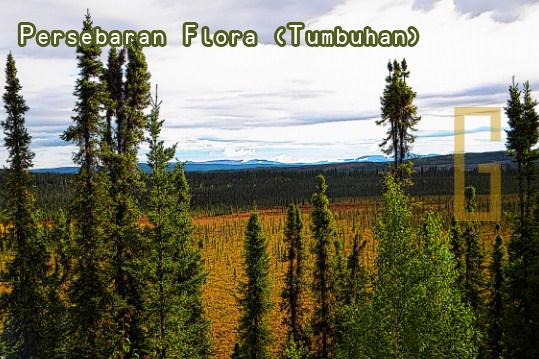 Persebaran Tumbuhan (Flora) di Muka Bumi