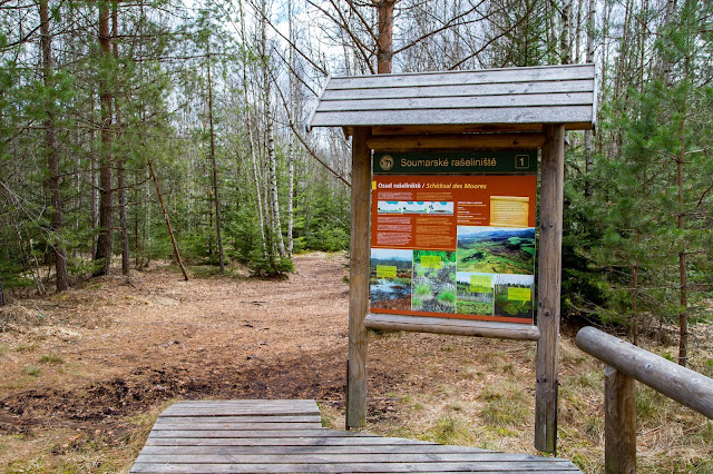 Rundweg im Säumermoor - Soumarské rašeliniště | Wandern im tschechischen Böhmerwald | Nationalpark Sumava | Soumarský Most | Wandern Šumava 03