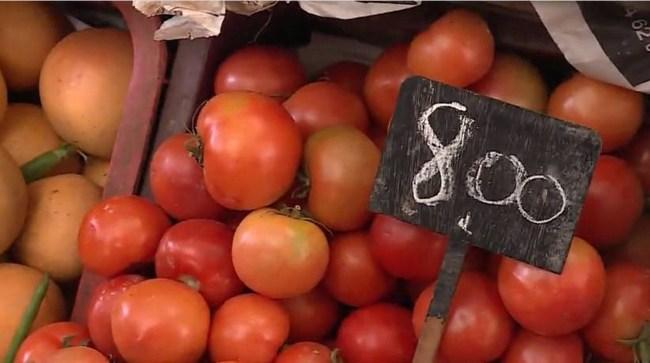 الطماطم رخيسة في اسواق الجملة ملتهبة عند التقسيط..!!