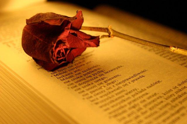 Kufer Wierszy 1 List Do Koryntian 131 13 Hymn Do Miłości
